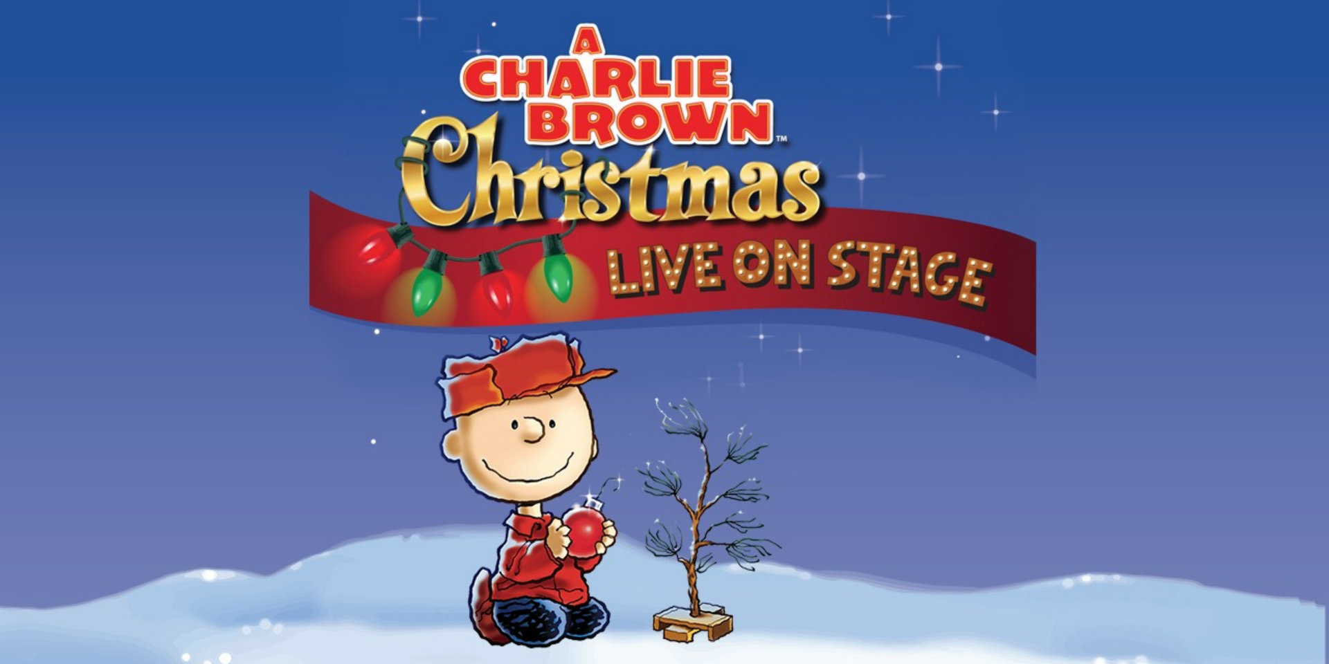 Charlie Brown Christmas Images.A Charlie Brown Christmas Tourism Windsor Essex Pelee Island